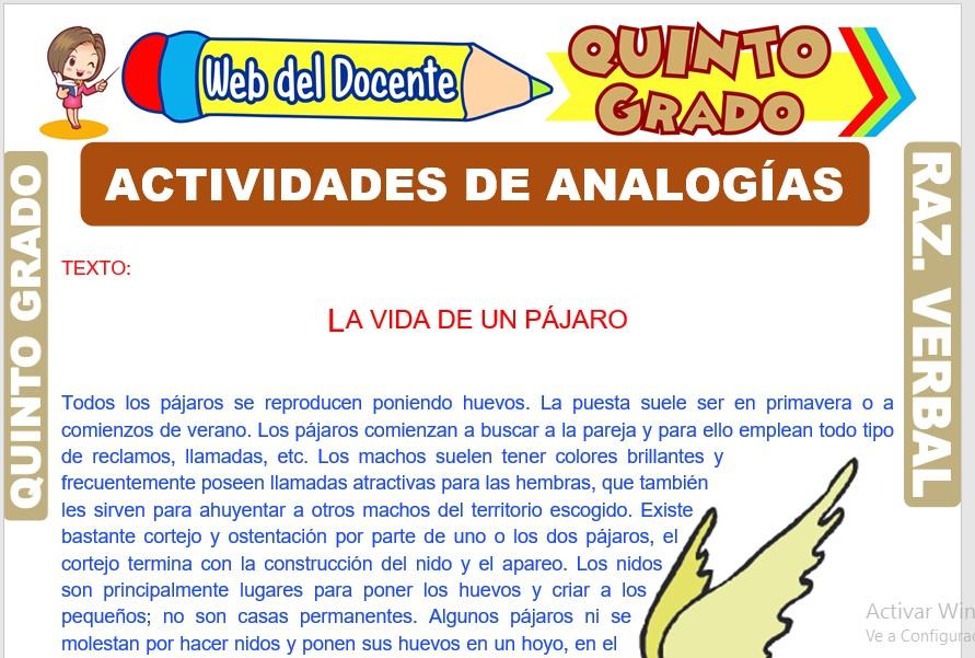 Ficha de Actividades de Analogías para Quinto Grado de Primaria