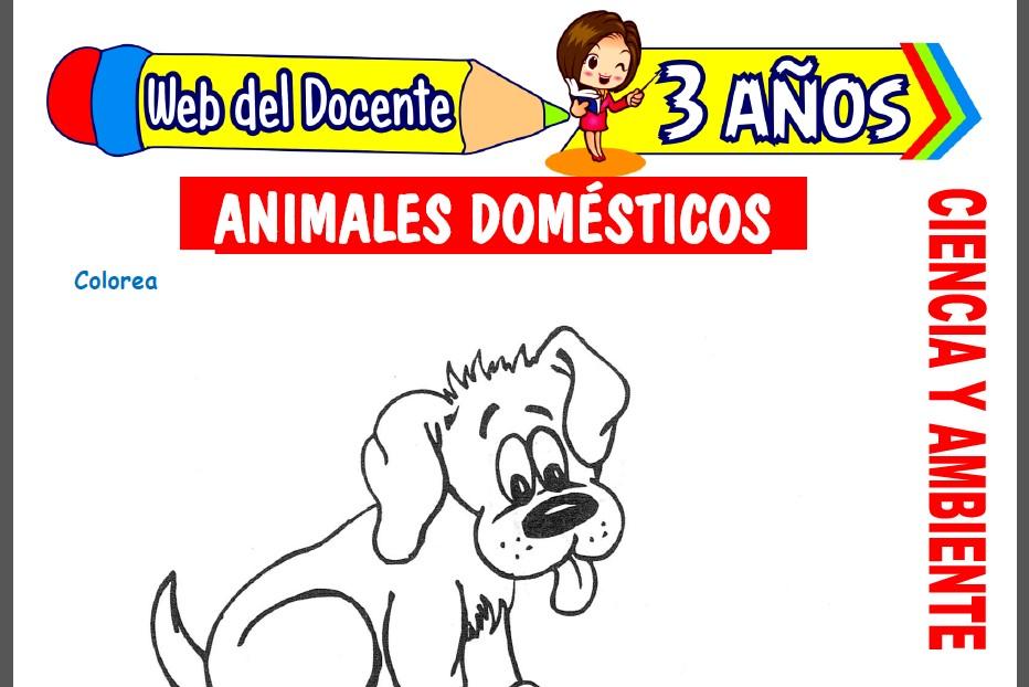 Animales Domésticos para Niños de 3 Años