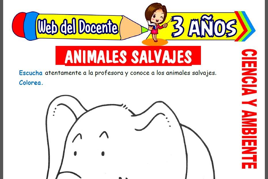 Animales Salvajes para Niños de 3 Años