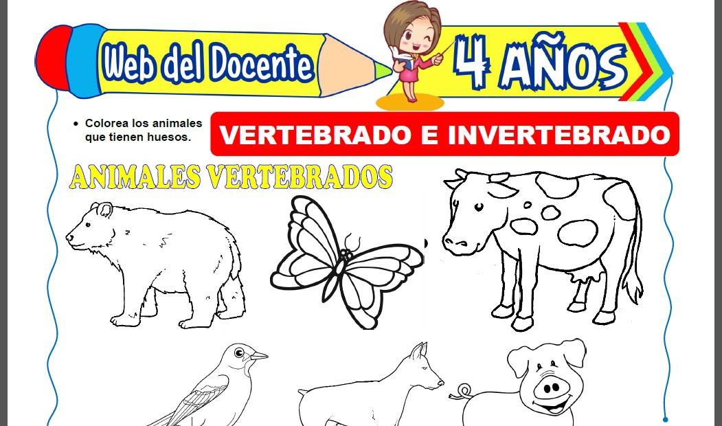 Animales Vertebrados e Invertebrados para Niños de 4 Años