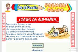 Ficha de Clases de Alimentos para Primer Grado de
