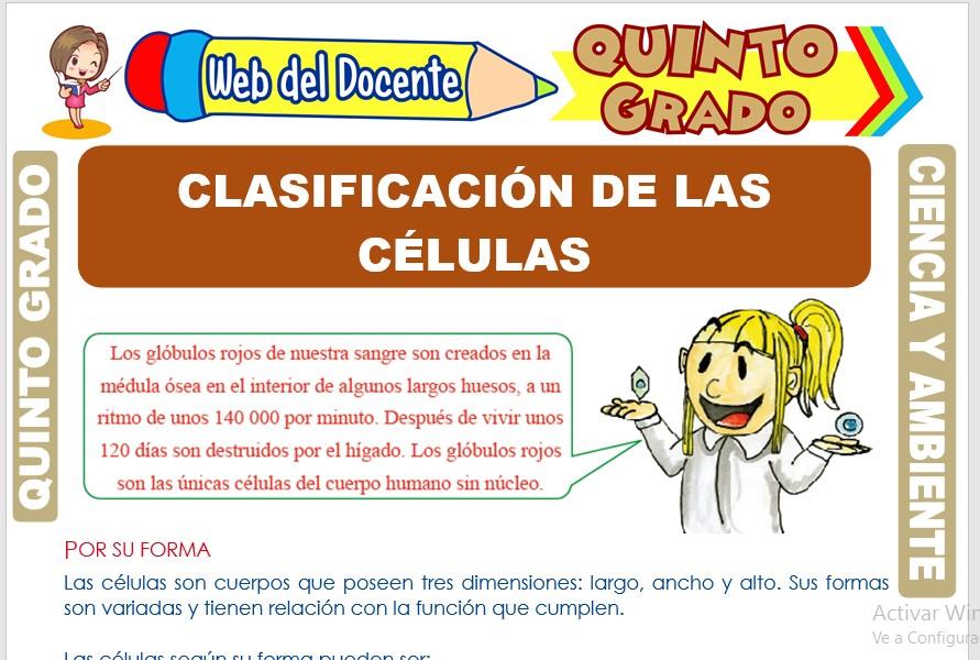 Ficha de Clasificación de las Células para Quinto Grado de Primaria