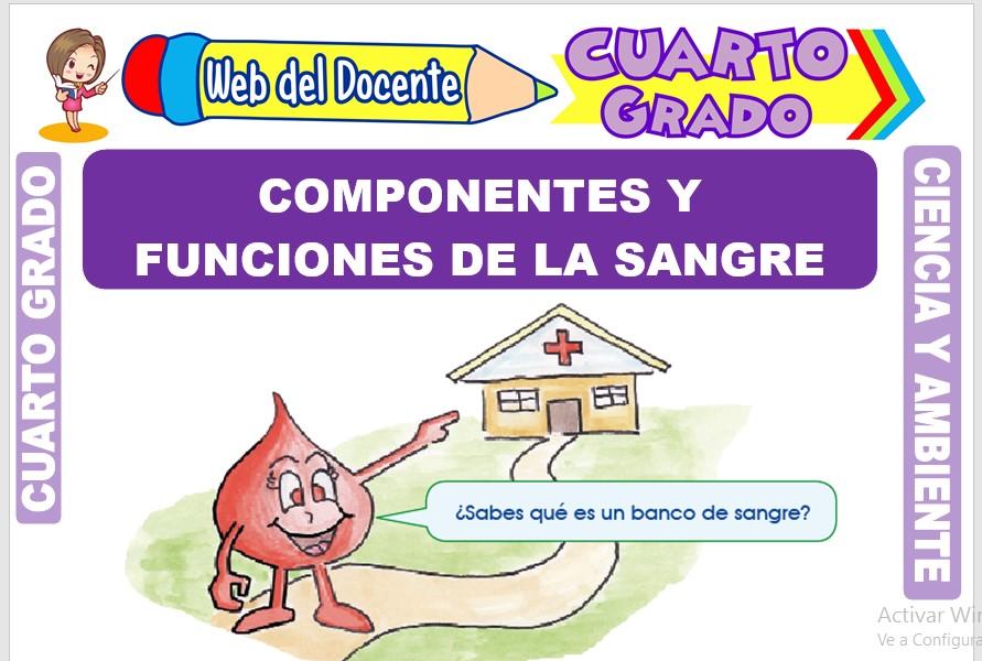 Ficha de Componentes y Funciones de la Sangre para Cuarto Grado de Primaria