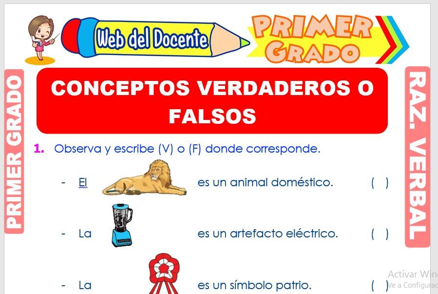 Ficha de Conceptos Verdaderos o Falsos para Primer Grado de Primaria