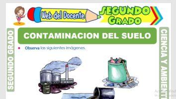 Ficha de Contaminación del Suelo para Segundo Grado de Primaria