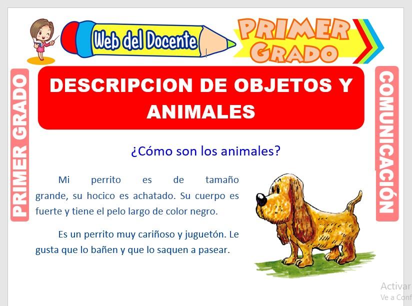 Ficha de Descripción de Objetos y Animales para Primero de Primaria