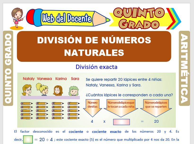 Ficha de División de Números Naturales para Quinto Grado de Primaria