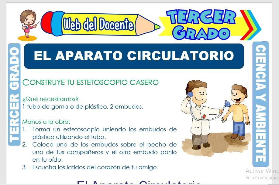 Ficha de El Aparato Circulatorio para Tercer Grado de Primaria