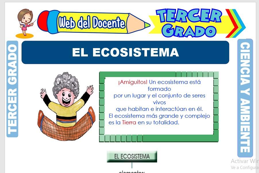Ficha de El Ecosistema para Tercer Grado de Primaria
