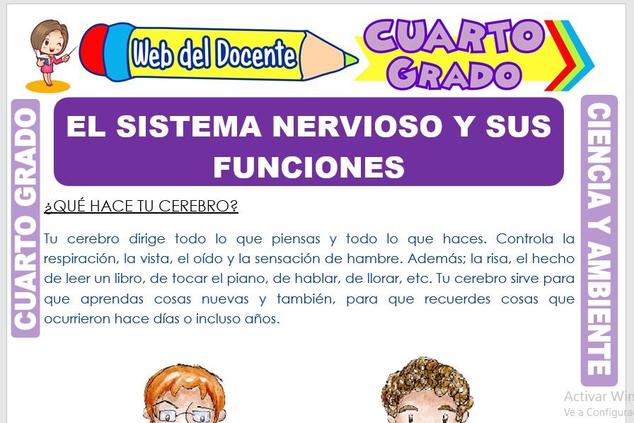 Ficha de El Sistema Nervioso y sus Funciones para Cuarto Grado de Primaria