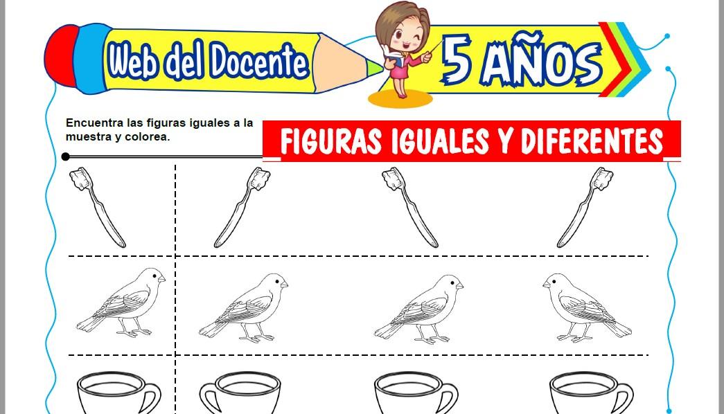 Muestra de la Ficha de Figuras Iguales y Diferentes para Niños de 5 Años