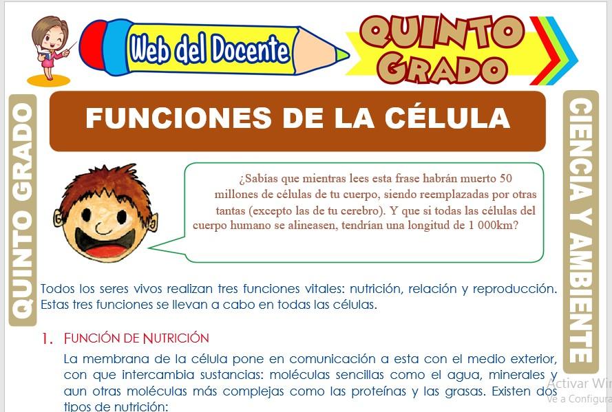 Ficha de Funciones de la Célula para Quinto Grado de Primaria