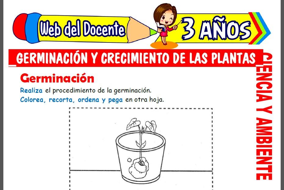 Germinación y Crecimiento de las Plantas para Niños de 3 Años