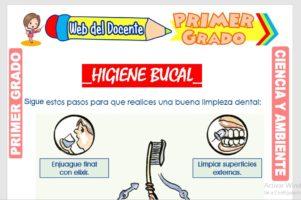 Ficha de Higiene Bucal para Primer Grado de Primaria