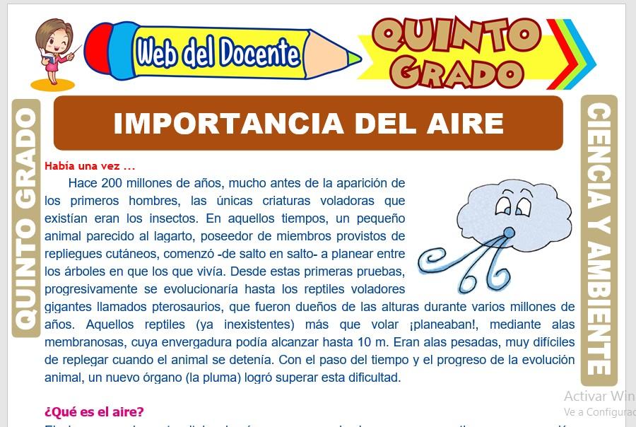 Ficha de Importancia del Aire para Quinto Grado de Primaria