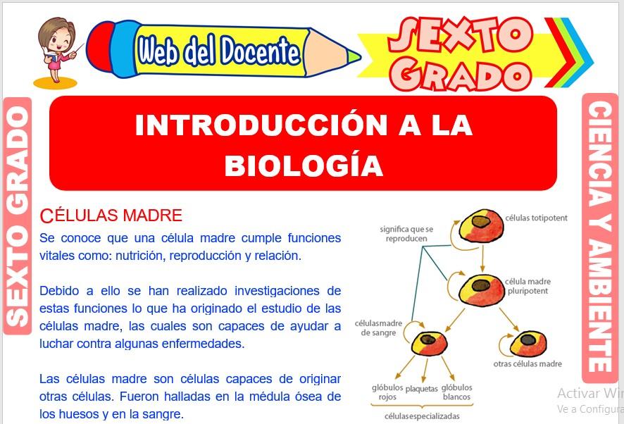 Ficha de Introducción a la Biología para Sexto Grado de Primaria