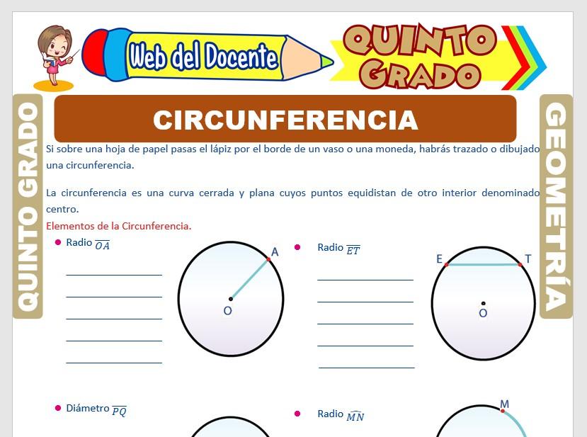 Ficha de La Circunferencia para Quinto Grado de Primaria