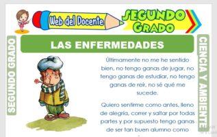 Ficha de Las Enfermedades para Segundo Grado de Primaria