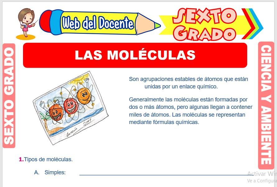 Ficha de Las Moléculas para Sexto Grado de Primaria