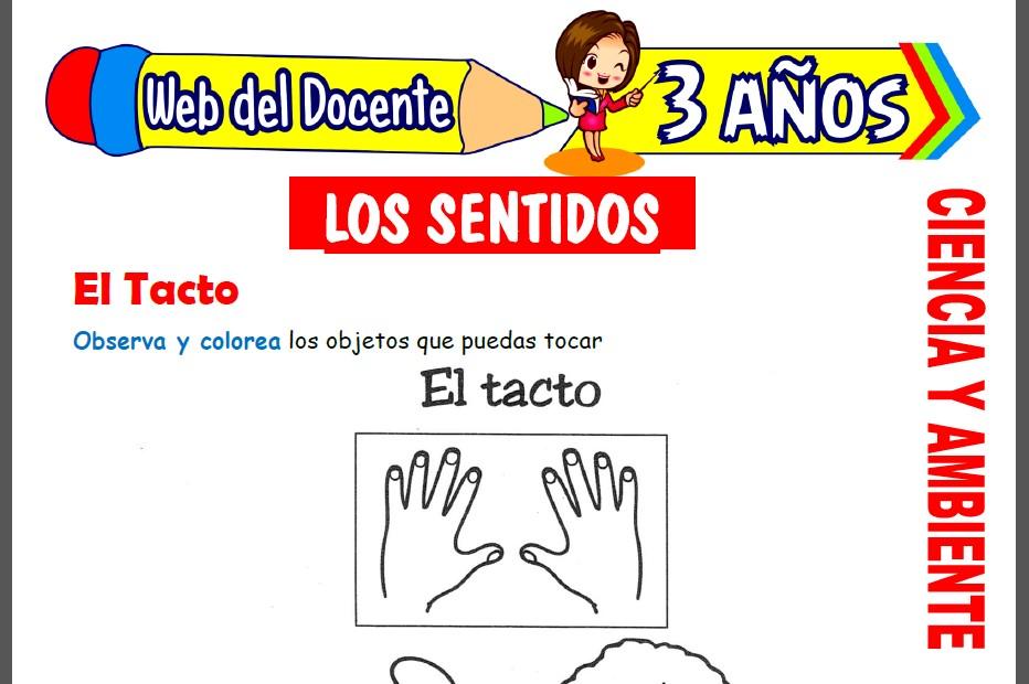 Los 5 Sentidos para Niños de 3 Años