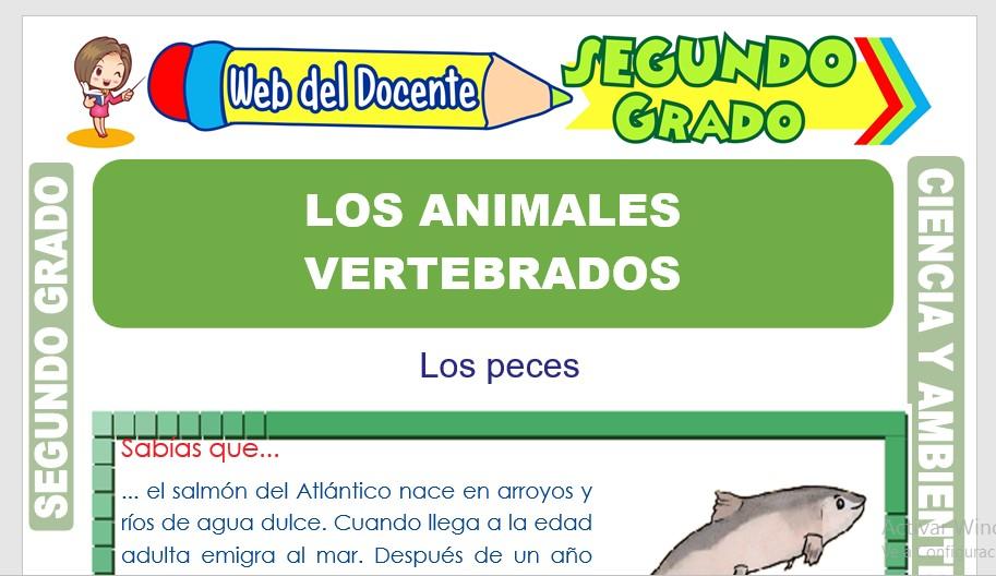 Ficha de Los Animales Vertebrados para Segundo Grado de Primaria