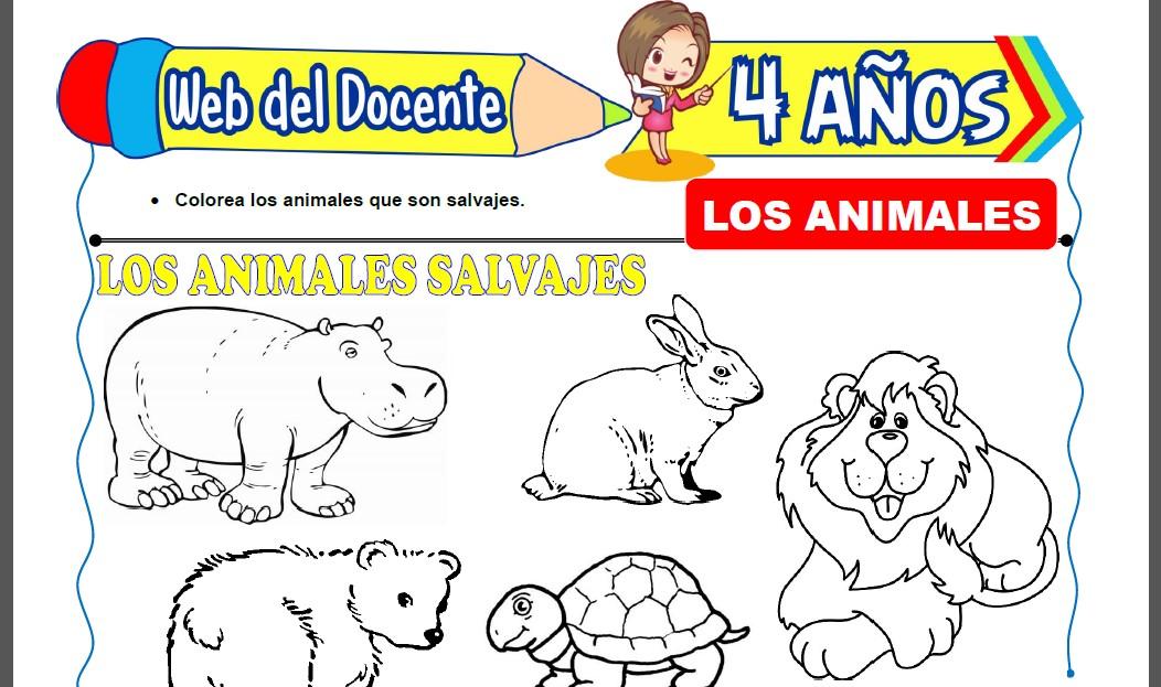 Los Animales para Niños de 4 Años