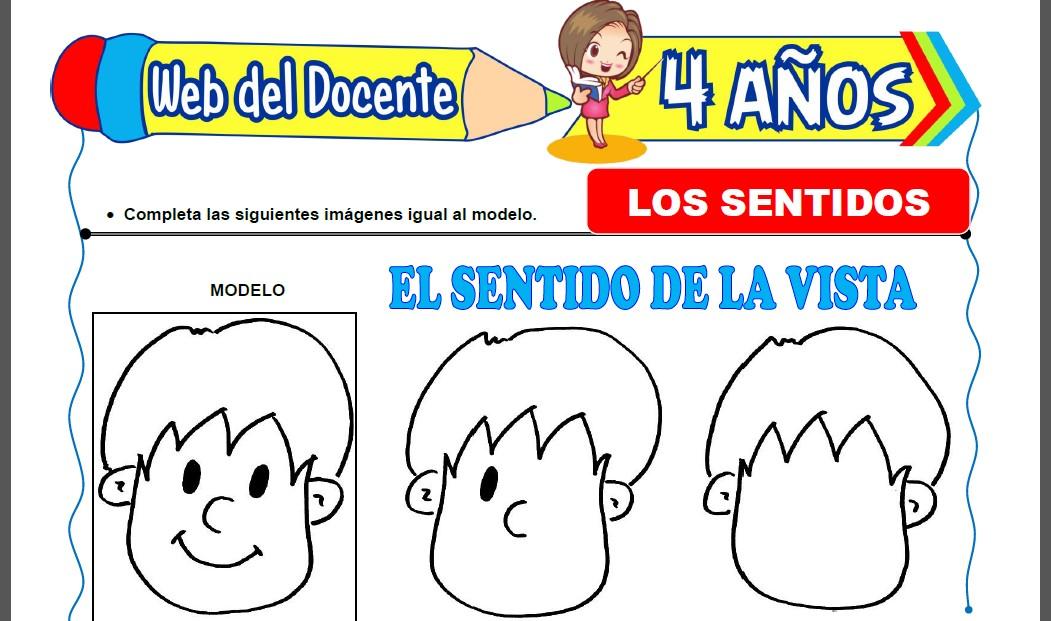Los Cinco Sentidos para Niños de 4 Años