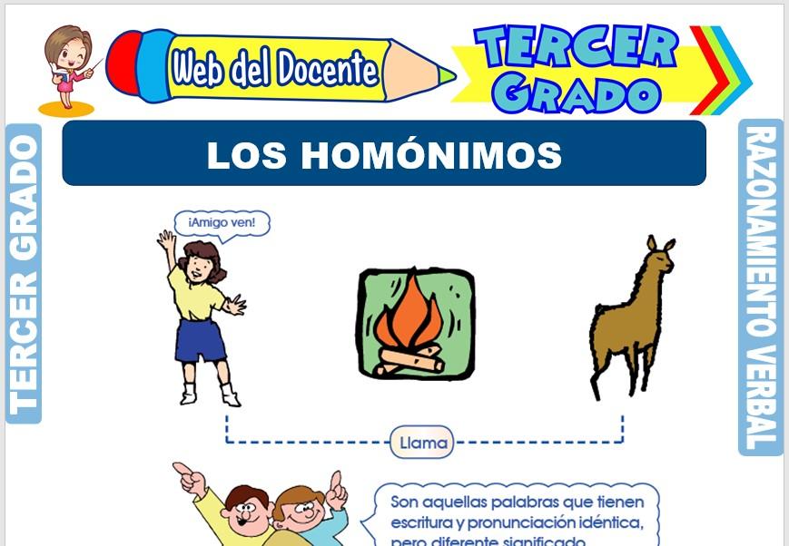 Ficha de Los Homónimos para Tercer Grado de Primaria