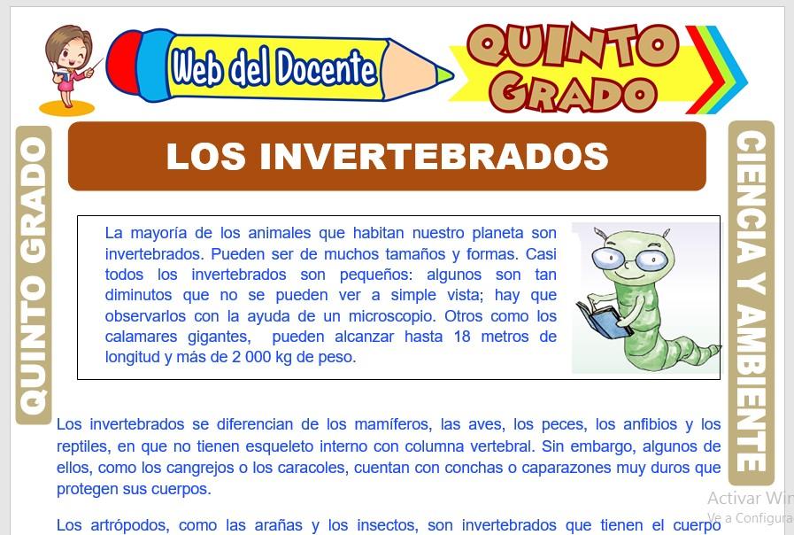 Ficha de Los Invertebrados para Quinto Grado de Primaria