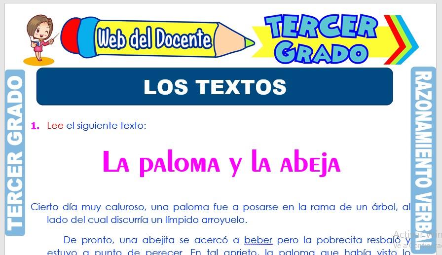 Ficha de Los Textos para Tercer Grado de Primaria