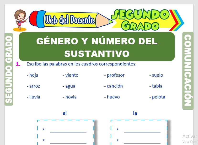 Ficha de Número y Género del Sustantivo para Segundo Grado de Primaria
