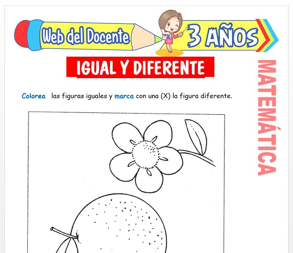 Ficha de Noción de Igual y Diferente para Niños de 3 AÑOS