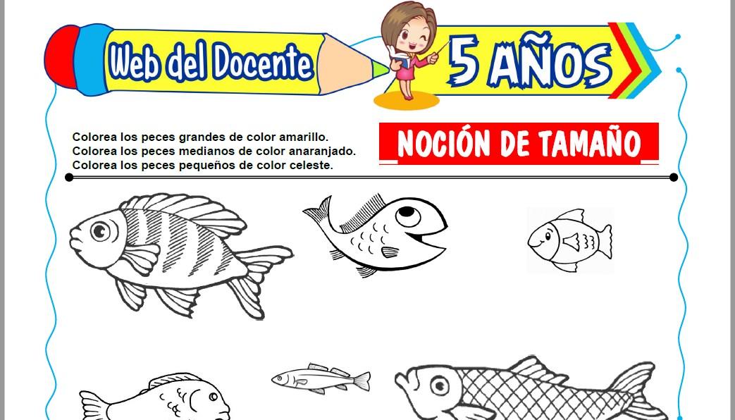 Muestra de la Ficha de Noción de Tamaño para Niños de 5 Años