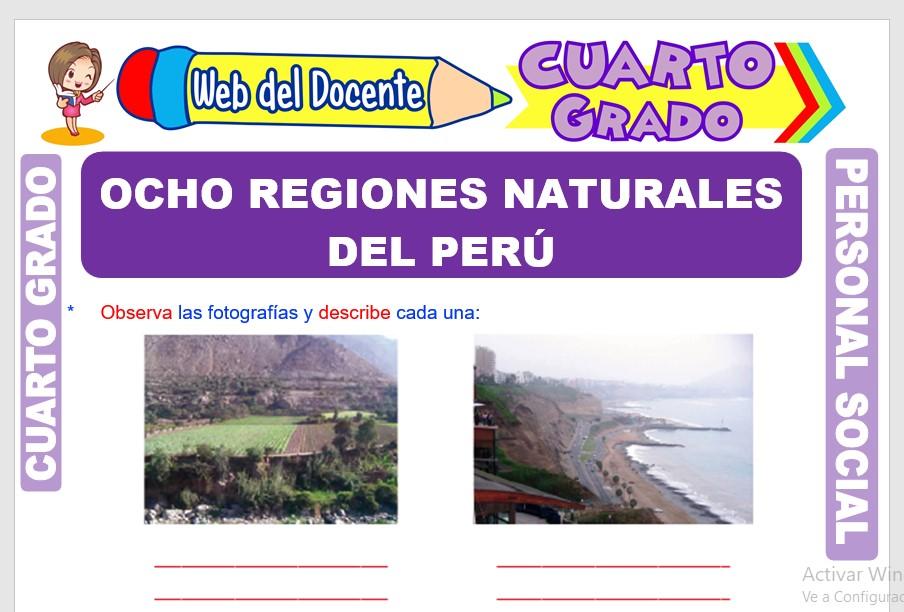 Ficha de Ocho Regiones Naturales del Perú para Cuarto Grado de Primaria