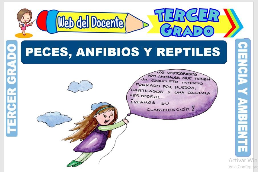 Ficha de Peces, Anfibios y Reptiles para Tercer Grado de Primaria