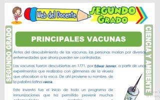 Ficha de Principales Vacunas para Segundo Grado de Primaria