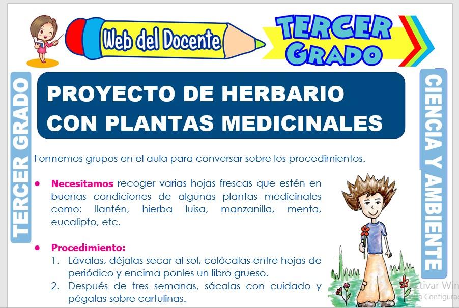 Ficha de Proyecto de Herbario con Plantas Medicinales para Tercer Grado de Primaria