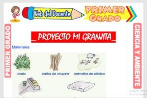 Ficha de Proyecto Mi Granjita para Primer Grado de Primaria