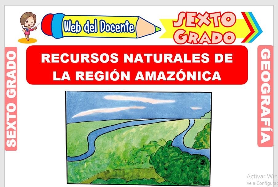 Ficha de Recursos Naturales de la Región Amazónica para Sexto Grado de Primaria