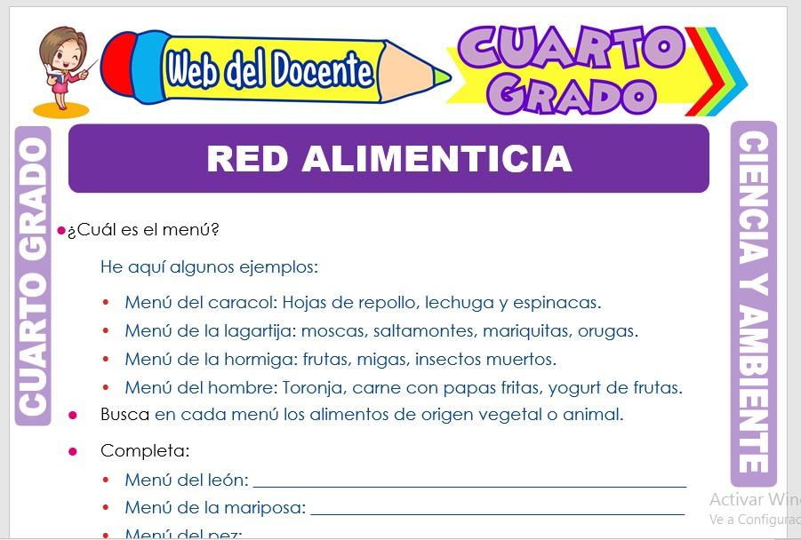 Ficha de Red Alimenticia para Cuarto Grado de Primaria