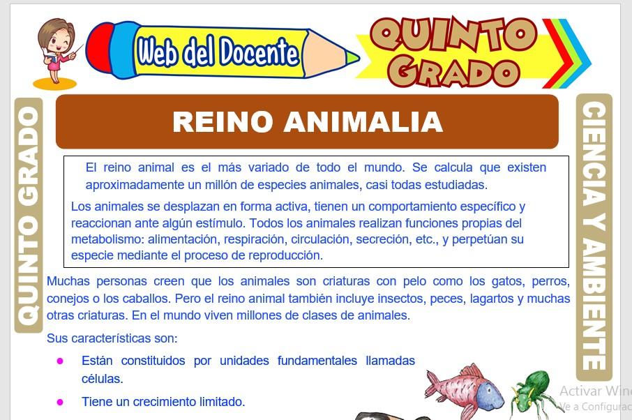 Ficha de Reino Animalia para Quinto Grado de Primaria