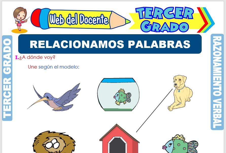Ficha de Relacionamos Palabras para Tercer Grado de Primaria
