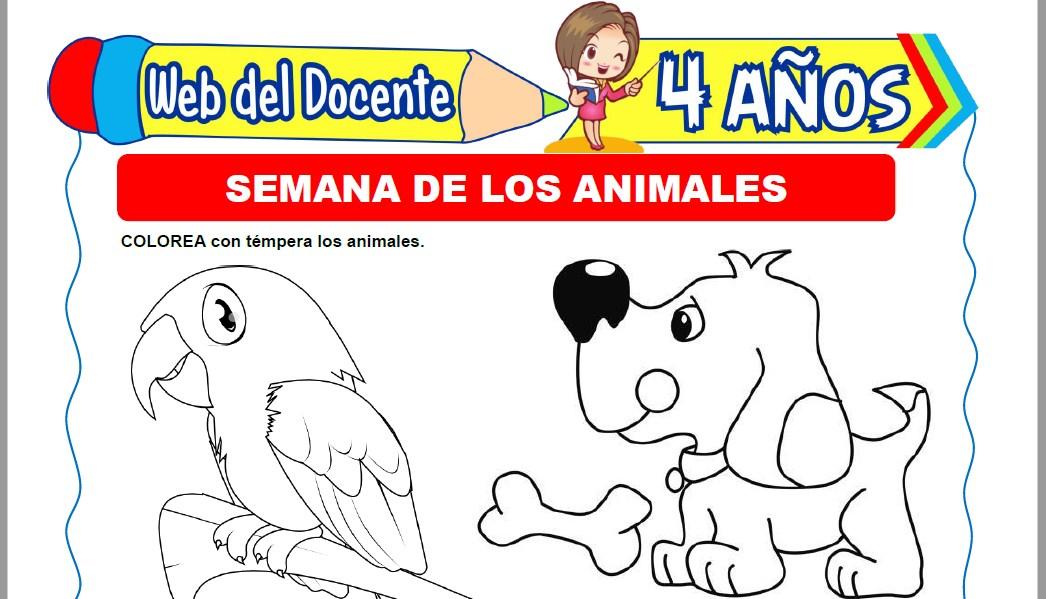 Muestra de la Ficha de Semana de los Animales para Niños de 4 Años