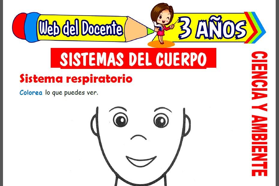Sistemas del Cuerpo para Niños de 3 Años