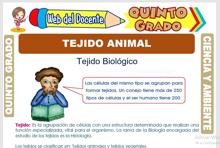 Ficha de Tejido Animal para Quinto Grado de Primaria