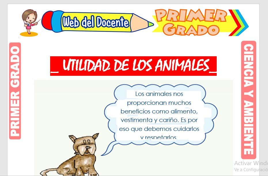 Ficha de Utilidad de los Animales para Primer Grado de Primaria